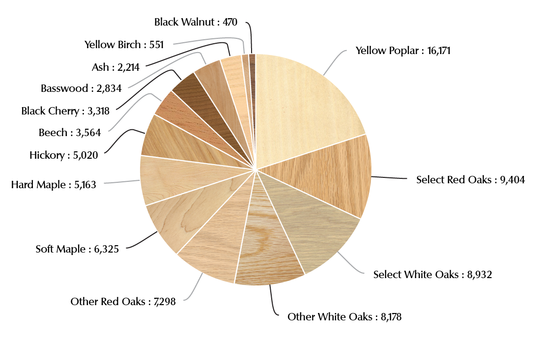 Hardwood Sawtimber Distribution by Species Group - Pie Chart